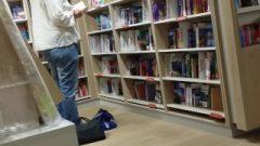 Library Flashing + Farts Kaltias ThePerpetual ArbitraryNumbers Celestial Pegasus WeeklyBattles